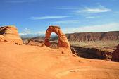 Arco delicado — Foto Stock
