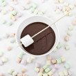 Marshmallow in a stick and melted chocolate — Stock Photo