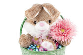 Bunny and chocolates inside a basket — Stock Photo