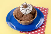 Chocolate flavor ice cream — Foto Stock
