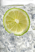 View of lemon slice in ice cubes — 图库照片
