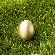 Golden egg on the green grass — Stock Photo
