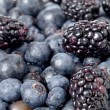Grapes and blackberries — Stock Photo