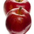 Two red apples on white background - Stock Photo