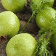 Ripe guavas — Stock Photo