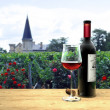 Medoc red wine — Stock Photo
