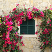 Mediterranean window — Stock Photo