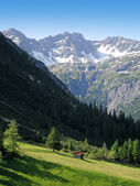Alpine view in Gramais — Stock Photo