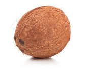 Coconut on white background — Stock Photo