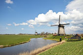 Traditional windmills in dutch landscape in the Netherlands — Stock Photo