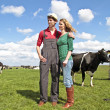 The farmer and his wife proudly looking at their cows — Stock Photo
