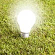 Enlightened bulb in the grass - Stock Photo