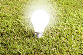 Enlightened bulb in the grass — Stock Photo