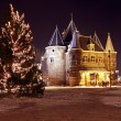 Christmas Tree on Dam Palace in Amsterdam the Netherlands at twilight — Stockfoto