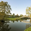 Typical dutch landscape: cropped willows, canals and meadows - Stock Photo