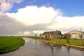 Typical dutch landscape with houses along the canals — Stock Photo