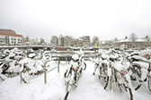 Snowy bikes in Amsterdam innercity in the Netherlands — Stock Photo