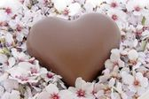 Valentine Day: Sweet chocolate heart in a bed of flowers — Stock Photo