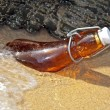 Stock Photo: Bottle washed ashore on beach