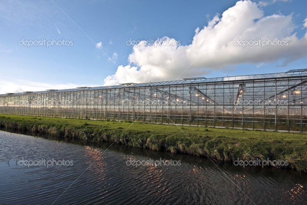 Greenhouse growing in the countryside from the Netherlands — Stock Photo #11456441