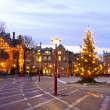 Christmas Tree on Dam Palace in Amsterdam Netherlands at twilight — Stock Photo #11464910