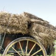 Stock Photo: Old handcart with hay bales in countryside