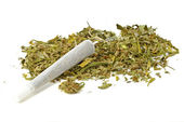 Marihuana joint with marihuana — Stock Photo