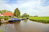 Typical dutch landscape in summertime in the Netherlands — Stock Photo