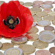 Red flower in golden coins isolated on white background — Stock Photo