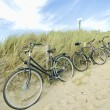 Three bicycles parked against sand dunes - Stock Photo