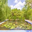 Beautiful garden with little pond in middle — Stock Photo #11503936