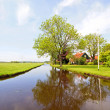 Typical dutch landscape: Water, fields and trees — Stock Photo #11504324