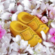 Wooden shoes from the Netherlands — Stock Photo
