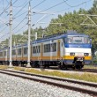 Train running in countryside from Netherlands — Stock Photo #11509602