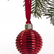 Christmas ornament in the tree — Stock fotografie
