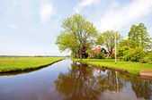 Typical dutch landscape: Water, fields and trees — Stock Photo