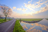 Typical dutch landscape at sunset — Stock Photo