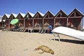 ビーチでの fisherhuts — ストック写真