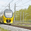 Train running in countryside from Netherlands — стоковое фото #11515205
