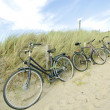 Three bicycles parked against sand dunes — Stock Photo