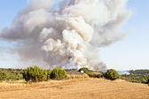 Forest fire in the countryside from Portugal — Stock Photo