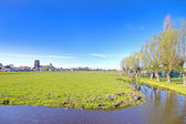 Typical dutch landscape in springtime in the Netherlands — Stock Photo