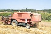 Jordbruket maskin skörda vete — Stockfoto