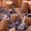 Ashtray — Stockfoto #11992727