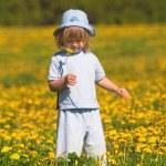 Boy with a dandelion — Stock Photo #11142603