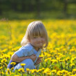 Boy in a dandelion field - Stock Photo