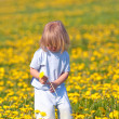 Boy with a dandelion - Stock Photo
