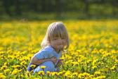 Boy in a dandelion field — Stock Photo