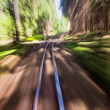 Narrow gauge railroad track — Stock Photo