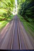 Narrow gauge railroad track — Stock Photo